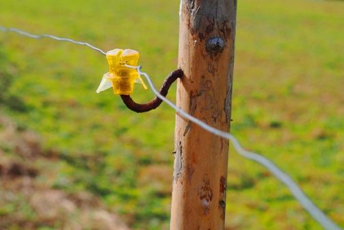 Arranques, esquineros y estaciones: Son las estructuras fundamentales del alambrado. Todo tiro recto de alambrado tiene dos extremos, en los cuales se ubican postes esquineros.