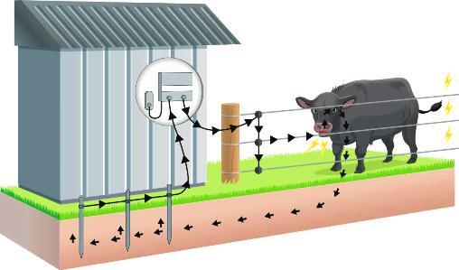 Es la parte más importante del sistema, porque es la que cierra el circuito. De ella depende la efectividad de la descarga eléctrica que recibirán los animales.