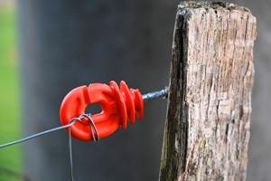 El alambrado eléctrico: Instalación y manejo
