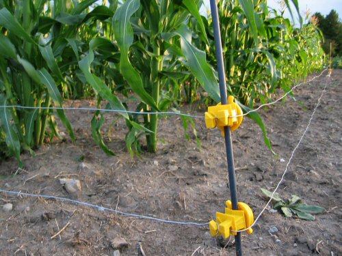 Los alambres electrificados deben ser tensados levemente y no estirarse como el alambrado tradicional.