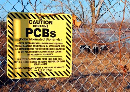 Los PCB son compuestos químicos utilizados en la industria que están presentes en los transformadores y capacitores eléctricos, en la pintura, el papel copia sin carbón, los selladores y los plásticos.