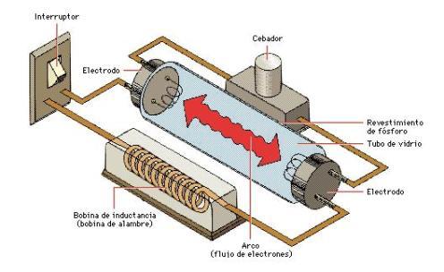 Las lámparas fluorescentes funcionan de la siguiente forma: