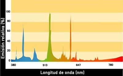 Espectro de una luz fluorescente estándar blanca y diurna (CRI 65). Note que no hay intensidad en la parte naranja y verde del espectro.