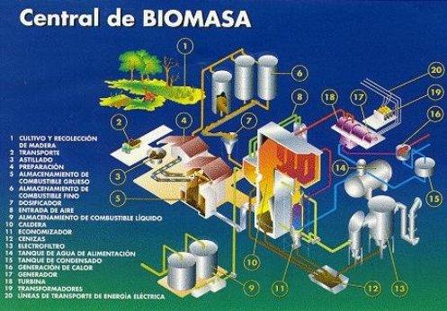 En México el presidente no autoriza el uso de la caña y el maíz para biocombustible y en Francia reducirán a la mitad el uso de pesticidas, proponen cambiar las políticas del transporte y generar impuestos al uso del petróleo.