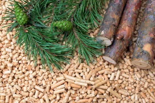 Los costos de la energía no reflejan a menudo las ventajas ambientales de la biomasa o de otros recursos energéticos renovables.