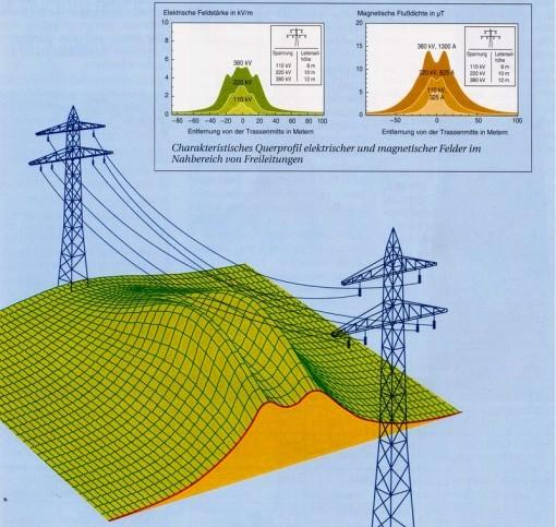 En caso de sospechar de la existencia de elevada radiación proveniente de líneas de energía cercanas al lugar de residencia, se puede informar a las autoridades correspondientes para que tomen medidas.