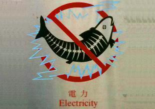 La pesca eléctrica