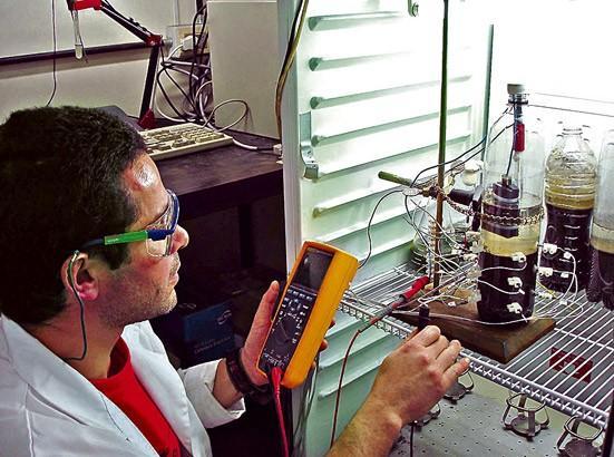 Cuando Yuri Gorby descubrió que un microbio que transforma metales tóxicos puede hacer brotar diminutos cables eléctricamente conductores de su membrana celular, razonó que esta rareza anatómica y su fisiología capaz de modificar metales debían estar relacionadas.