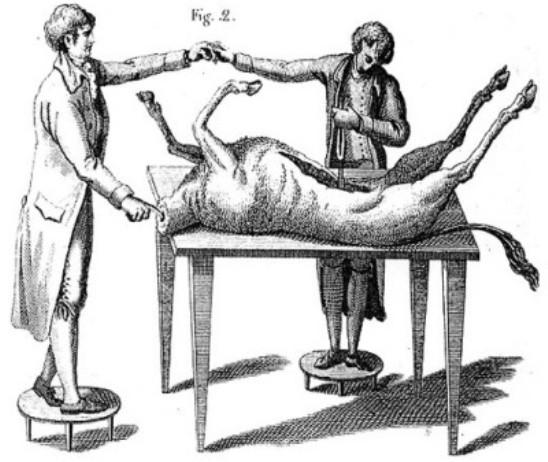 Aldini (1762-1834) viajó por toda Europa realizando espectáculos donde demostraba el efecto de electrificar los cuerpos de animales y personas. Su actuación más significativa la realizó en el Royal College of Surgeons de Londres, con el cadáver de un ahorcado llamado George Forster.