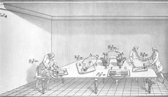 Sus experimentos tomaron otro cauce cuando usó los efectos atmosféricos del relámpago natural como fuente de electricidad. Galvani había oído de los famosos experimentos que Benjamin Franklin había hecho con las cometas, así como los de Thomas Dalibard, un botánico en Paris que había recogido electricidad atmosférica con una varilla de hierro de quince metros de largo.