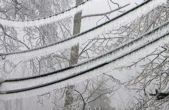La combinación de nieve húmeda y el viento intenso registrados el pasado lunes 8 de marzo en Cataluña provocó la aparición de una multitud de formaciones de hielo, conocidas por los ingenieros como manguitos de hielo,