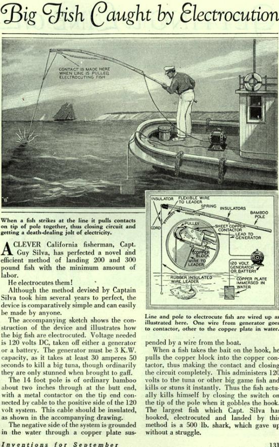 A mitad de camino entre la silla eléctrica y las armas Taser,  el sistema se basa en hacer circular una corriente eléctrica por el cuerpo del pez a través del circuito formado por el anzuelo  electrificado, el mismo pez y un electrodo sumergido en el agua.