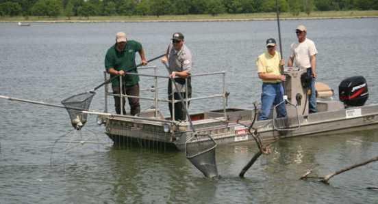 El método del Capitán Silva, hoy conocido como electro-fishing, se sigue aplicando en la actualidad a pesar de encontrarse expresamente prohibido por numerosos acuerdos internacionales y códigos de conducta para la pesca responsable.