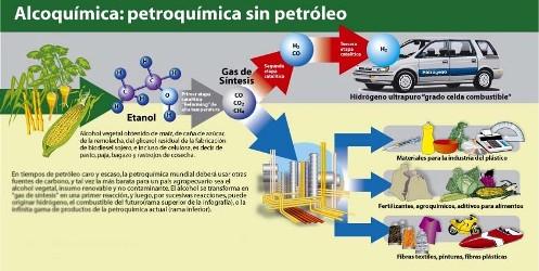 La industria de los biocombustibles nacería concentrada y abre dudas en términos de degradación de los suelos.