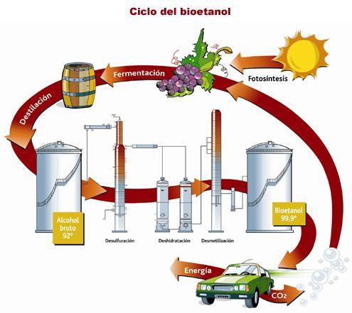 A partir del 1º de enero de 2010, tanto las naftas como el gasoil deberán obligatoriamente mezclarse con un 5 por ciento de bioetanol, las primeras, y 5 por ciento de biodiesel, el segundo.