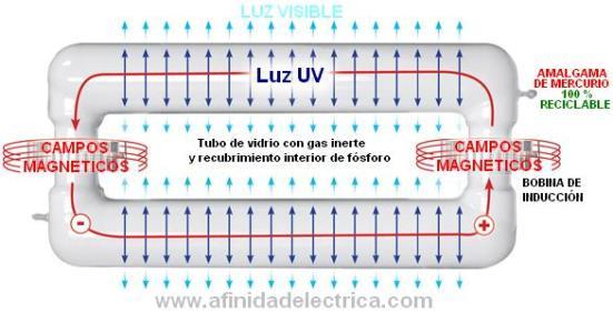 La lámpara de inducción comienza su encendido entregando aproximadamente un 85% de la intensidad luminosa nominal, al minuto alcanza el 90% y a los cinco minutos de su encendido alrededor del 100%.