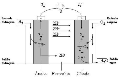 La pila de combustible de membrana de intercambio de protones (proton exchange membrane fuel cell o PEMFC) es una de las tecnologías más prometedoras.