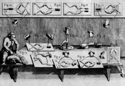 Luigi Galvani, profesor de anatomía de la Universidad de Bolonia, Italia, realizó un experimento donde observó que las patas de una rana recién muerta se crispaban y pataleaban al tocárselas con 2 barras de metales diferentes.