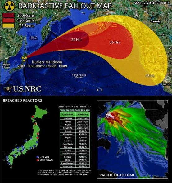 """Los niveles estimados por André-Claude Lacoste difieren de los comunicados por Tokio. Japón colocó el accidente nuclear en el nivel 4, que equivale a un """"accidente de alcance local"""""""