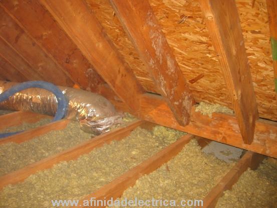 Los lugares en el desván en donde hay más fugas son, generalmente, donde las paredes se encuentran con el piso, detrás y debajo del triangulo que se forma ahí, y en los áreas de los techos falsos y cielorrasos.
